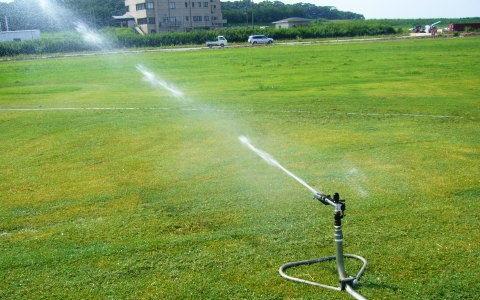 芝生養生管理 散水