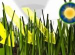 テラプラス 芝生保護の仕組み 03