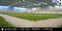 デッソ・ロングパイル人工芝の実績紹介(iDNAX編)