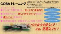 TAMARIBAから2018年11月の魅力満載!会員様限定イベントのご紹介!