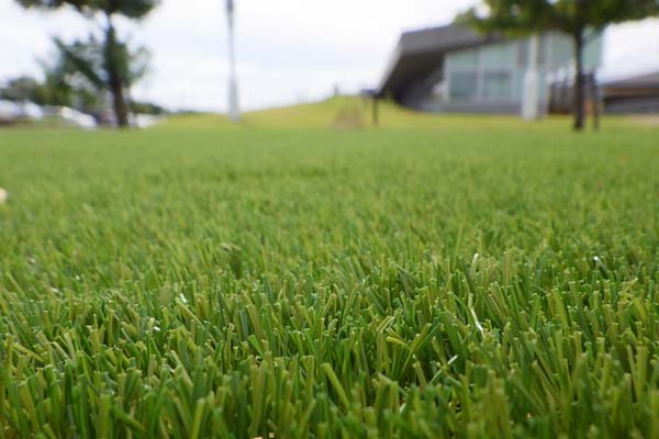 景観用人工芝敷設工(ジョーキーターフLS-K40) A=253.8m2