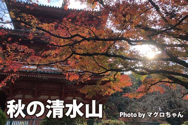 秋の清水山