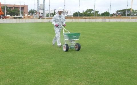 芝生養生管理2