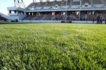 ミクニワールドスタジアム北九州 オープニングイベント(ラグビースペシャルマッチ)レポート