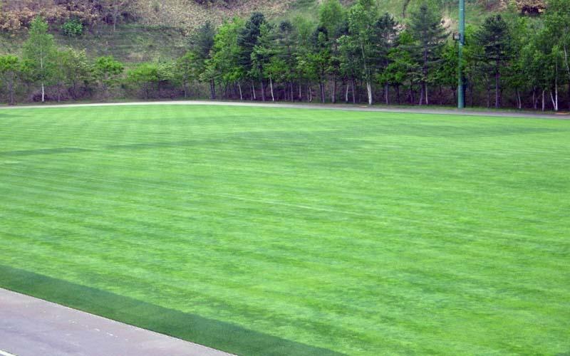 北の大地・北海道でのコウフ・フィールド流芝生管理「第5弾」をお届けします!